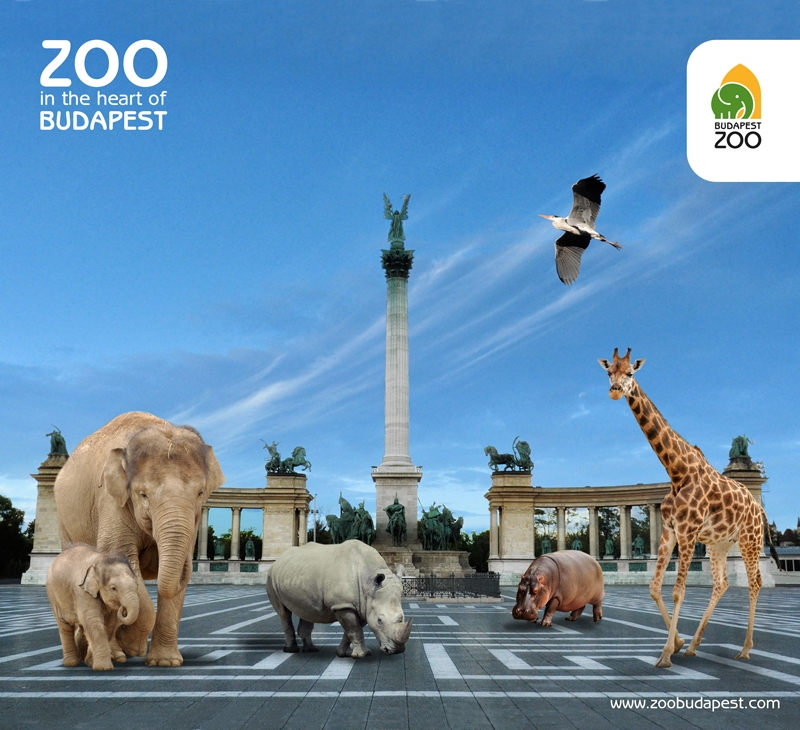 Leading Zoo Professionals Will Come Together In Budapest Zoo Zoo